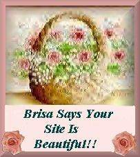 Award of Beauty On The Web from Brisa